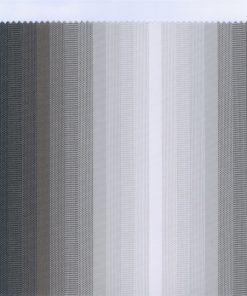 338803